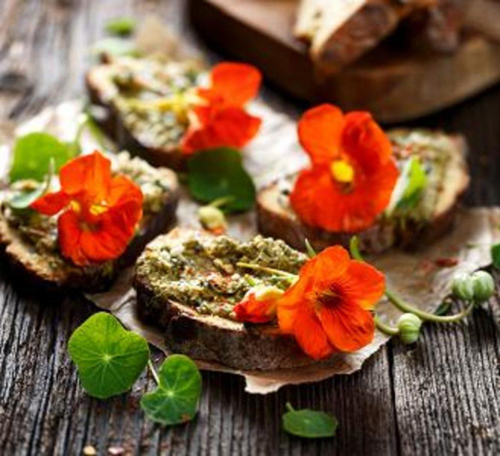 Cinq fleurs à cuisiner bonnes pour la santé